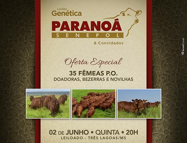leilaoGeneticaParanoa2016
